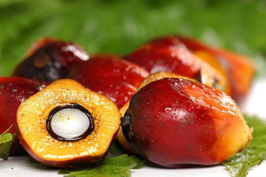 produk turunan kelapa sawit